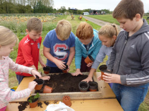 Bonterre_School_Children_growing_their_own_gardens